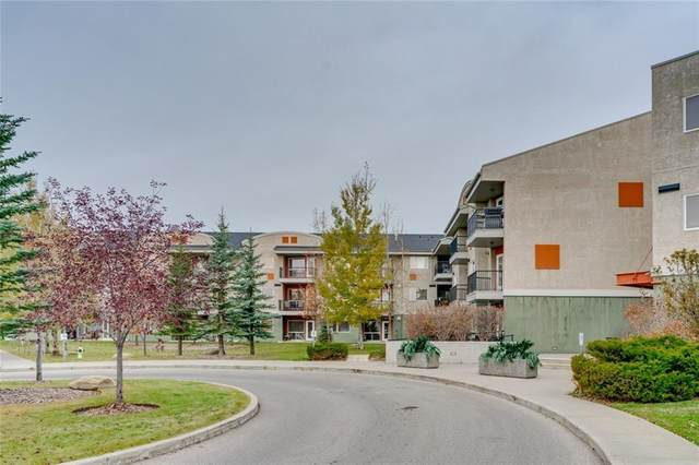 69 Springborough Court SW #202, Calgary, AB T3H 5V5 (#C4291804) :: The Cliff Stevenson Group