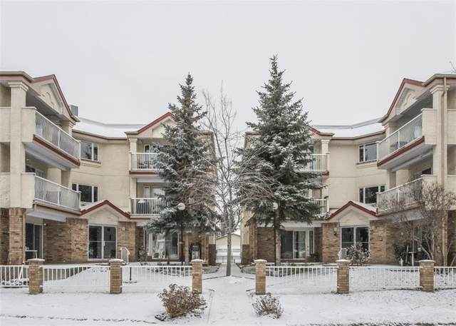 1723 35 Street SE #313, Calgary, AB T2A 1B4 (#C4292624) :: Redline Real Estate Group Inc