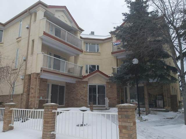 1723 35 Street SE #205, Calgary, AB T2A 1B4 (#C4292900) :: Redline Real Estate Group Inc