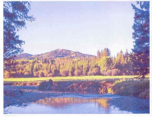 184155 762 Highway, Bragg Creek, AB T3Z 1A3 (#C4292934) :: Redline Real Estate Group Inc
