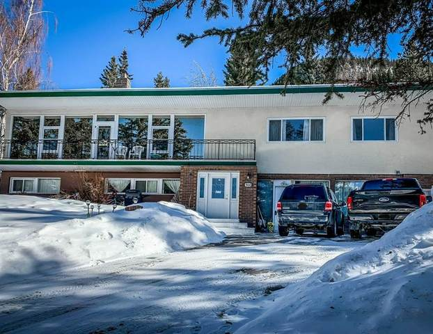 500 Deer Street, Banff, AB T1L 0C0 (#C4293187) :: Canmore & Banff