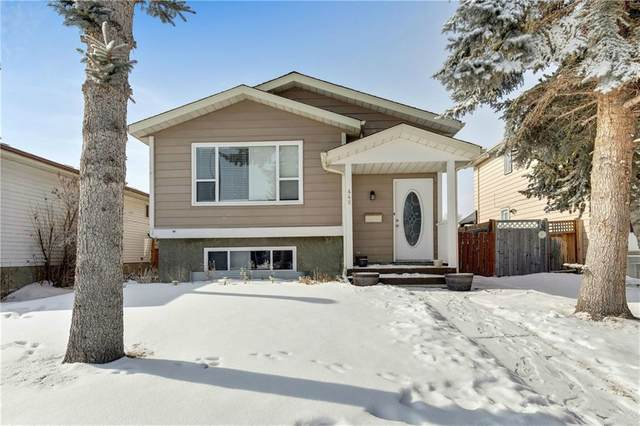 448 Abalone Place NE, Calgary, AB T2A 6Y6 (#C4293765) :: Redline Real Estate Group Inc