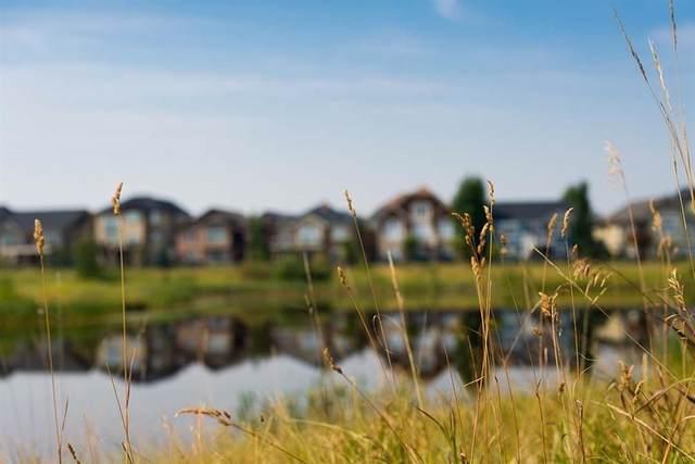 1507 Montrose Terrace SE, High River, AB T1V 0B5 (#C4294334) :: Calgary Homefinders