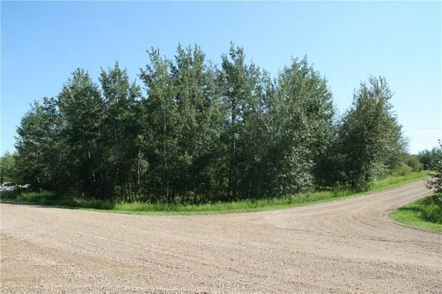 7 Buffalo Drive, Rural Stettler County, AB T0C 1G0 (#C4296630) :: Canmore & Banff