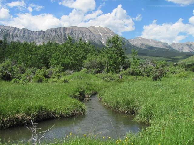 293 acres Chapel Rock Road, Rural Pincher Creek M.D., AB T0L 0K0 (#C4297366) :: Redline Real Estate Group Inc