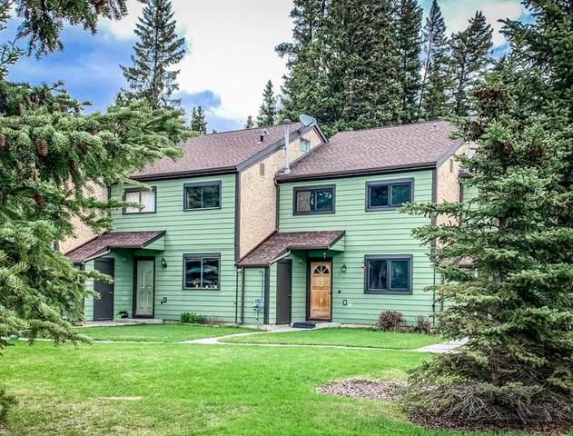 Cougar Street #509, Banff, AB T1L 1B6 (#C4297844) :: Canmore & Banff