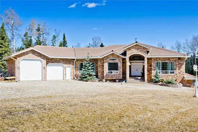 282140 Rge Rd 53, Rural Rocky View County, AB T0M 2E0 (#C4300203) :: Redline Real Estate Group Inc