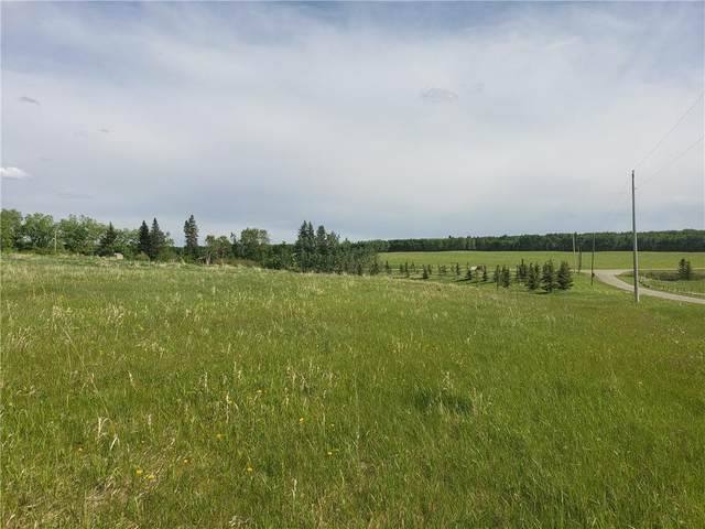 5 Mountain Glen Close, Rural Rocky View County, AB T4G 0G6 (#C4302065) :: The Cliff Stevenson Group