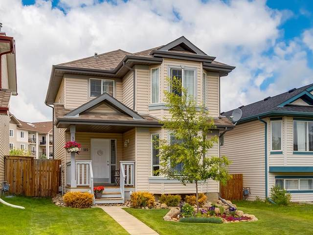115 Cimarron Grove Crescent, Okotoks, AB T1S 2E2 (#C4303234) :: Calgary Homefinders