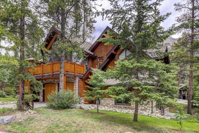 17 Blue Grouse Ridge, Canmore, AB T1W 1L5 (#C4304888) :: Canmore & Banff