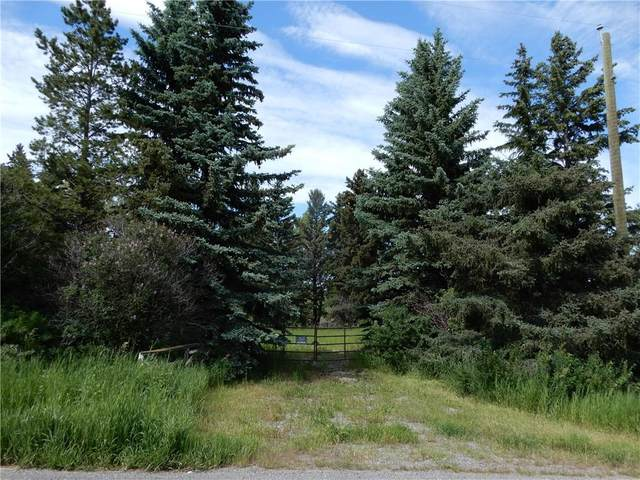 112152 266 Avenue W, Rural Foothills County, AB T1S 3V3 (#C4306568) :: Calgary Homefinders