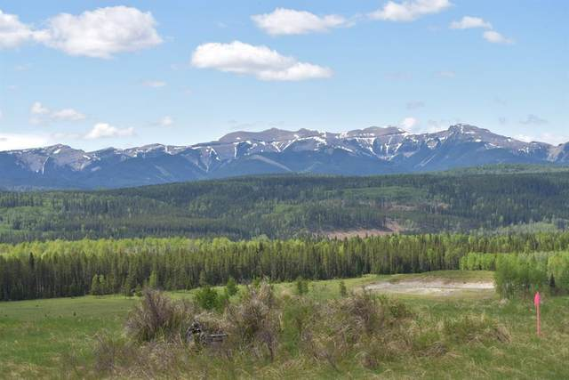 217 Misty Valley Close, Rural Clearwater County, AB T0M 2H0 (#CA0194298) :: Canmore & Banff