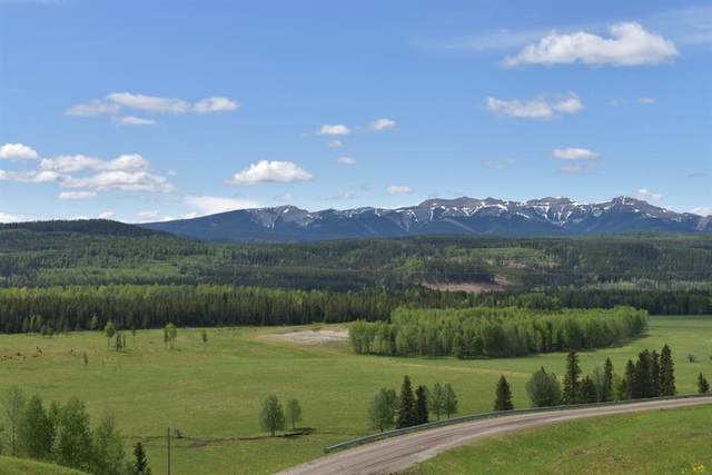 210 Misty Valley Close, Rural Clearwater County, AB T0M 2H0 (#CA0194300) :: Canmore & Banff
