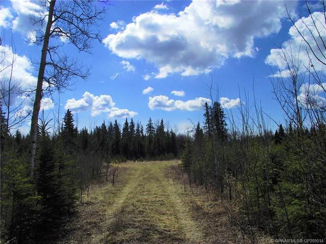 NW-19-81-9-W6 Highway 681, Rural Saddle Hills County, AB T0H 3V0 (#GP205014) :: Calgary Homefinders