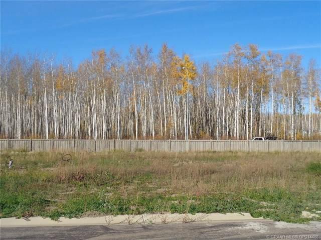 17 Bear Creek Drive, High Level, AB T0H 1Z0 (#GP214488) :: Calgary Homefinders