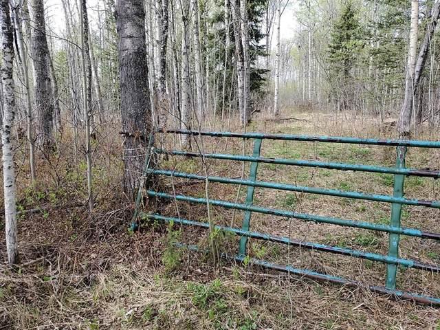 745055 Rge Rd 53 #12, Rural Grande Prairie No. 1, County of, AB T0H 3C0 (#GP214934) :: Team Shillington | Re/Max Grande Prairie