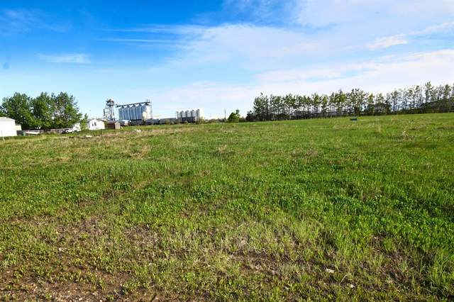 4516 46 Avenue, Rycroft, AB T0H 3A0 (#GP215026) :: Team Shillington   Re/Max Grande Prairie