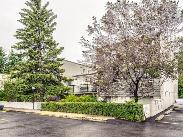 6919 Elbow Drive SW #120, Calgary, AB T2V 0E6 (#A1010850) :: Redline Real Estate Group Inc