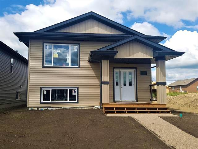 4431 75 Street, Camrose, AB T4V 5C8 (#A1011039) :: Canmore & Banff