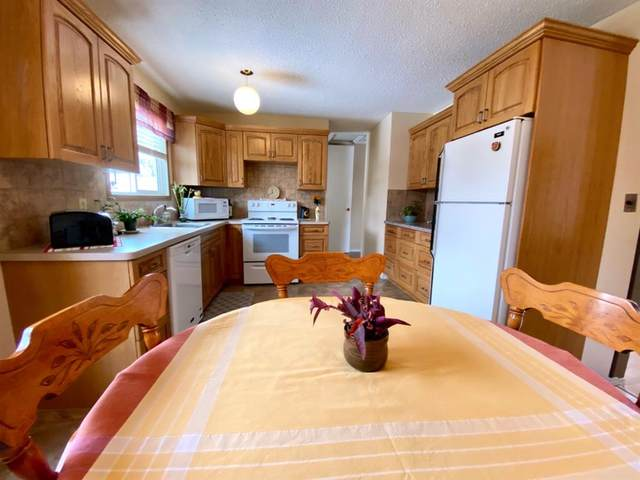 20 Dr Anderson Park Street, Brooks, AB T1R 0K8 (#A1011129) :: Canmore & Banff