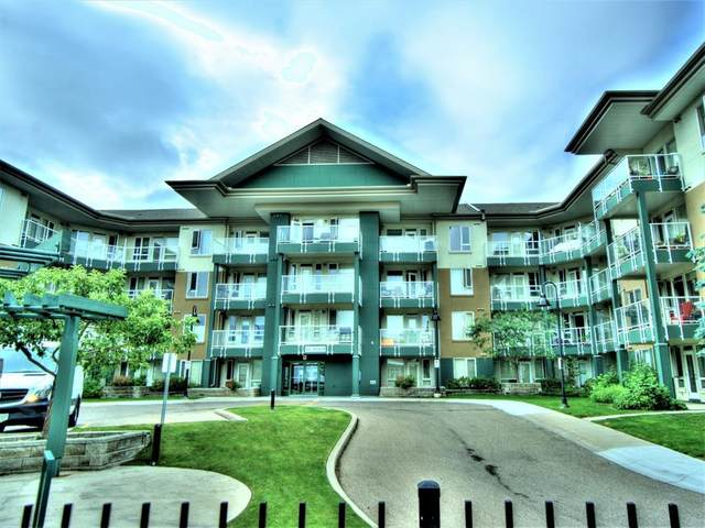 3111 34 Avenue NW #237, Calgary, AB T2L 0Y2 (#A1018960) :: Redline Real Estate Group Inc
