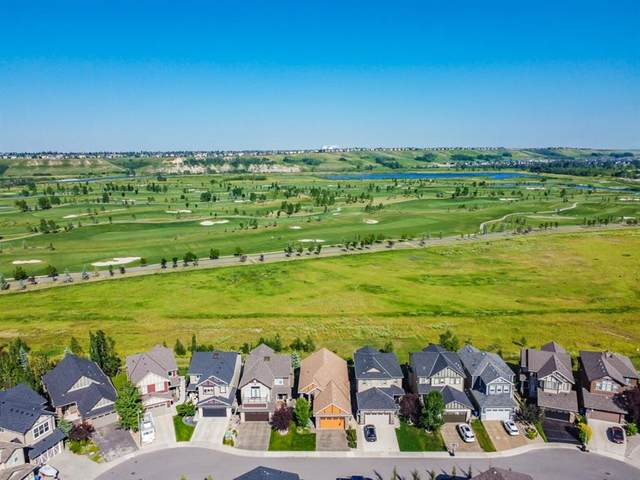 46 Chaparral Valley Grove SE, Calgary, AB T2X 0M3 (#A1019052) :: Redline Real Estate Group Inc