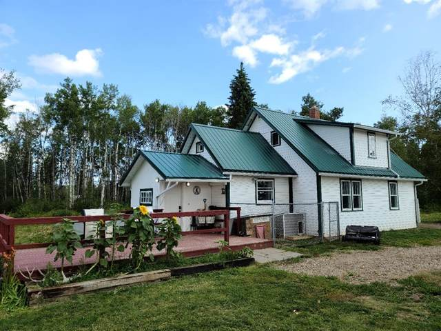 81402 Range Road 230, Rural Northern Sunrise County, AB T0H 2R0 (#A1020728) :: Calgary Homefinders