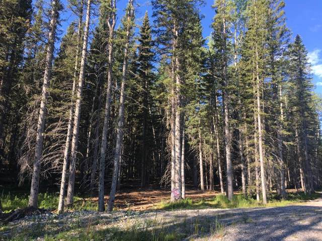 50071 Twp Rd 234 Other, Bragg Creek, AB T0L 0K0 (#A1022502) :: Canmore & Banff