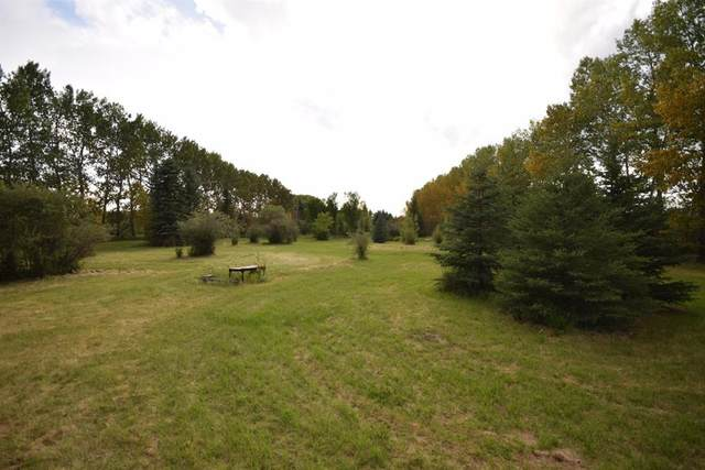 39, 26553 Highway 11, Rural Red Deer County, AB T4E 1A5 (#A1023194) :: Canmore & Banff