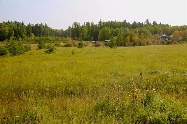 5241 Township Road 325A #24, Rural Mountain View County, AB T0M 1X0 (#A1033039) :: Calgary Homefinders