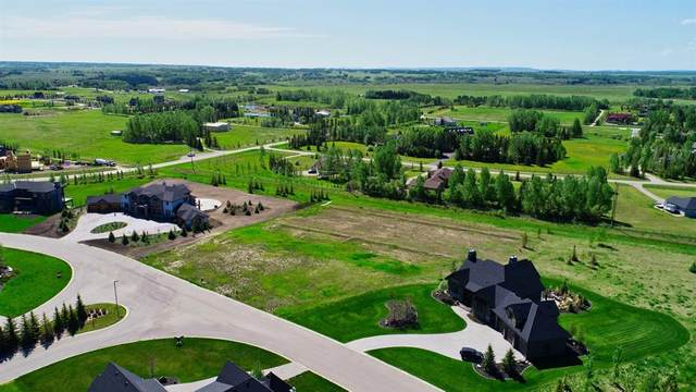 102 October Gold Way, Rural Rocky View County, AB T3Z 0A3 (#A1033184) :: Calgary Homefinders