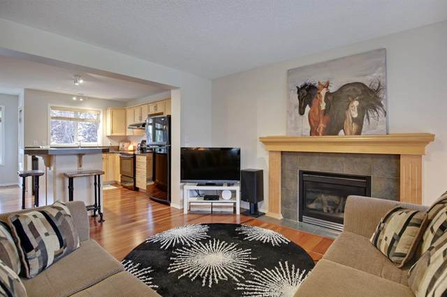 355 Copperfield Heights SE, Calgary, AB T2E 4R3 (#A1033235) :: Calgary Homefinders