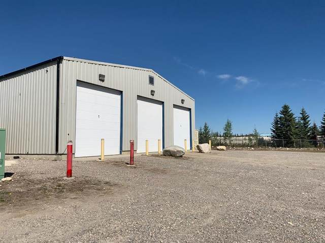 394 East River Road, Hinton, AB T7V 2G3 (#A1033896) :: Canmore & Banff