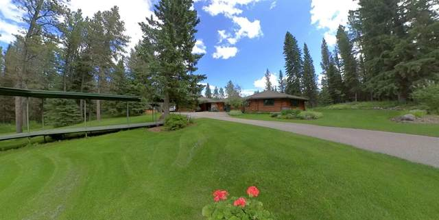143 Hawk Eye Road, Rural Rocky View County, AB T0L 0K0 (#A1034084) :: The Cliff Stevenson Group