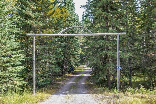 132 - 5417 Highway 579, Rural Mountain View County, AB T0M 2E0 (#A1037135) :: Canmore & Banff