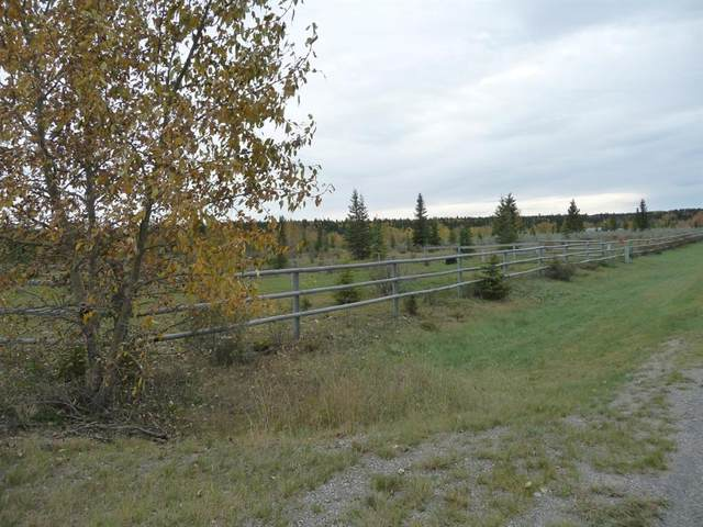 33052 Range Road 52 #27, Rural Mountain View County, AB T0M 1X0 (#A1038616) :: Calgary Homefinders