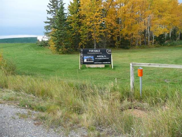 Address Not Published, Rural Mountain View County, AB T4H 1P6 (#A1039473) :: Calgary Homefinders