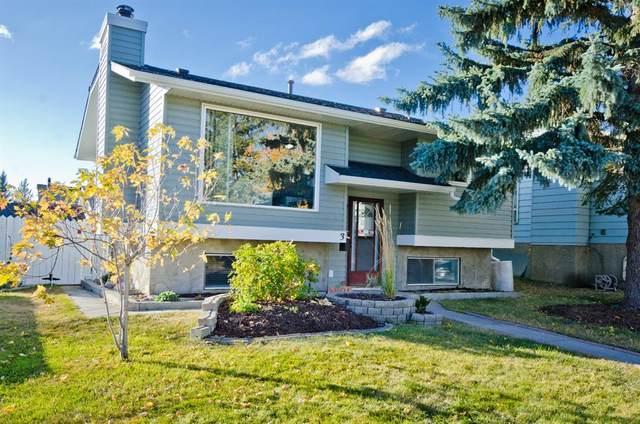 3 Castlegrove Way NE, Calgary, AB T3J 1T6 (#A1040803) :: Calgary Homefinders
