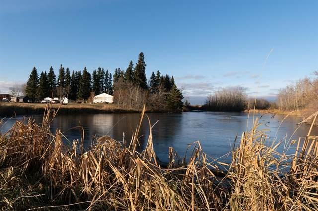 49344 Range Road 214, Hay Lakes, AB T0B 1W0 (#A1044873) :: Canmore & Banff