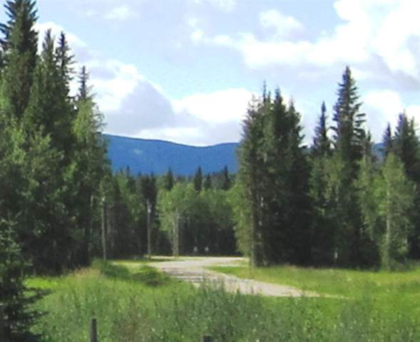 44 Boundary Close, Rural Clearwater County, AB T0M 0M0 (#A1050700) :: Calgary Homefinders