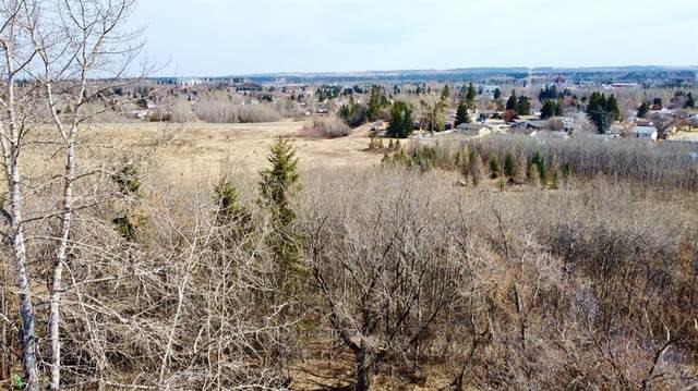 73 Oberlin Avenue, Red Deer, AB T4N 4X1 (#A1073166) :: Redline Real Estate Group Inc