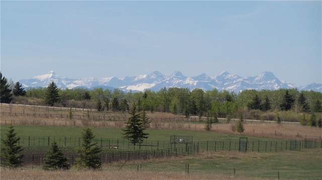 35164 262 Road, Rural Rocky View County, AB  (#A1077160) :: Redline Real Estate Group Inc