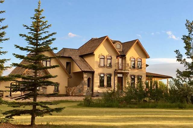 50 Norris Coulee Trail, Rural Foothills County, AB T1S 5A5 (#A1093170) :: Calgary Homefinders