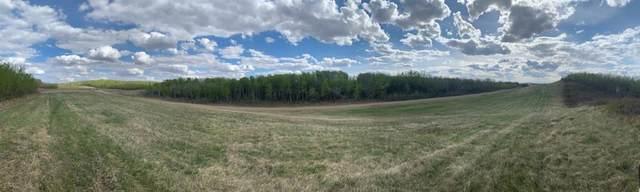 #1 Buffalo Lane, Rural Stettler County, AB T0C 3B0 (#A1106214) :: Calgary Homefinders