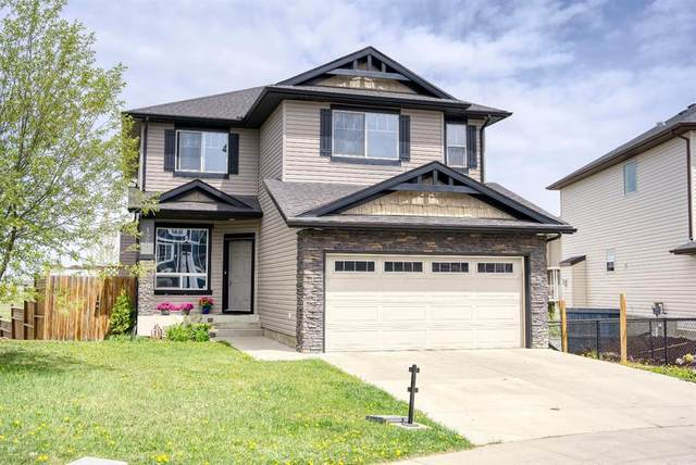 125 Lavender Link, Chestermere, AB T1X 0B2 (#A1108893) :: Calgary Homefinders