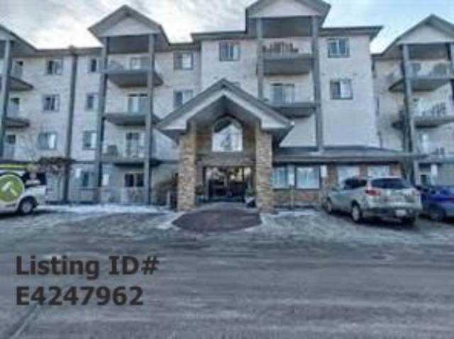 3425 19 Street NW #430, Edmonton, AB T6T 2B5 (#A1114848) :: Canmore & Banff