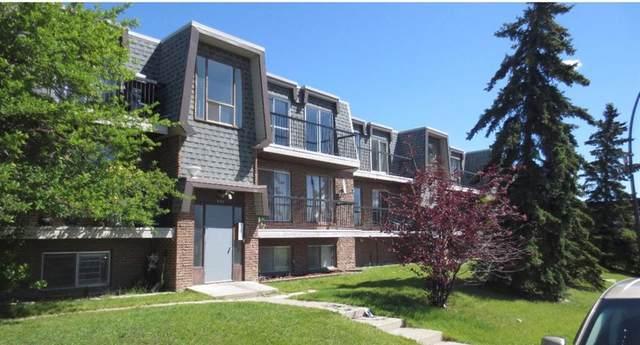 431C Huntsville Crescent NW #304, Calgary, AB T2K 4W3 (#A1116454) :: Calgary Homefinders