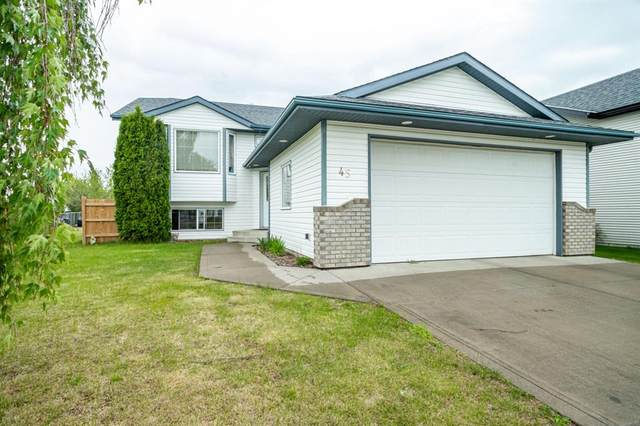 45 Daines Avenue, Red Deer, AB T4R 2W1 (#A1118695) :: Western Elite Real Estate Group