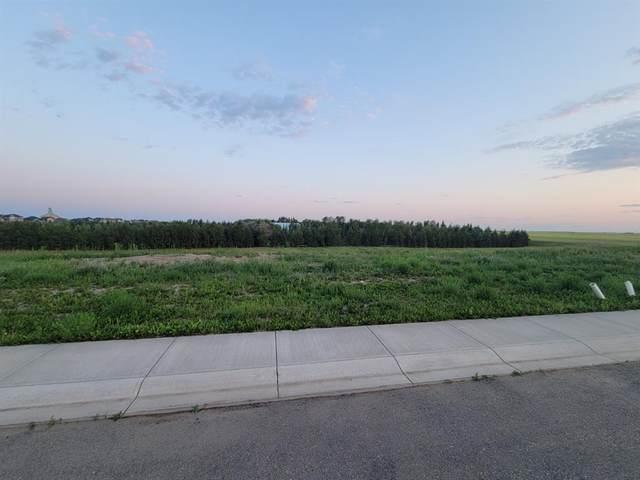 23 St. Andrews Close, Lyalta, AB T0J 1Y1 (#A1128596) :: Calgary Homefinders