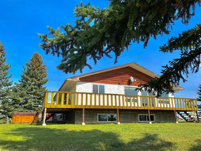 370004 160 Street W, Rural Foothills County, AB T0L 0H0 (#A1145850) :: Canmore & Banff